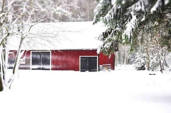 snowstorm-tiltshift