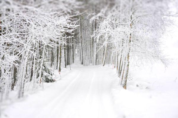 snowstorm4-tiltshift-1